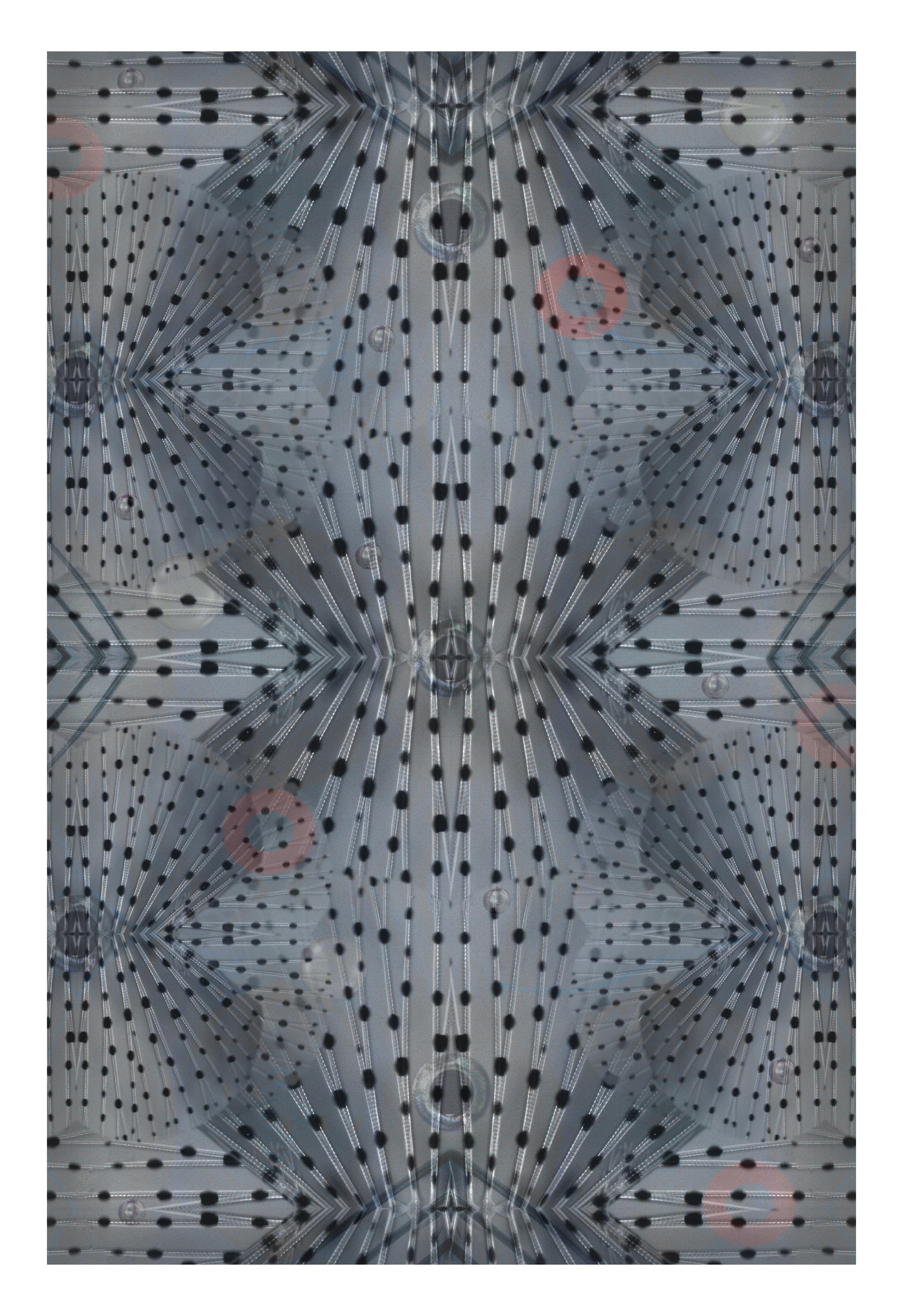Déco - Tapis - Tapis Flying Coral Fish / 200 x 300 cm - Moooi Carpets - Gris - Polyamide