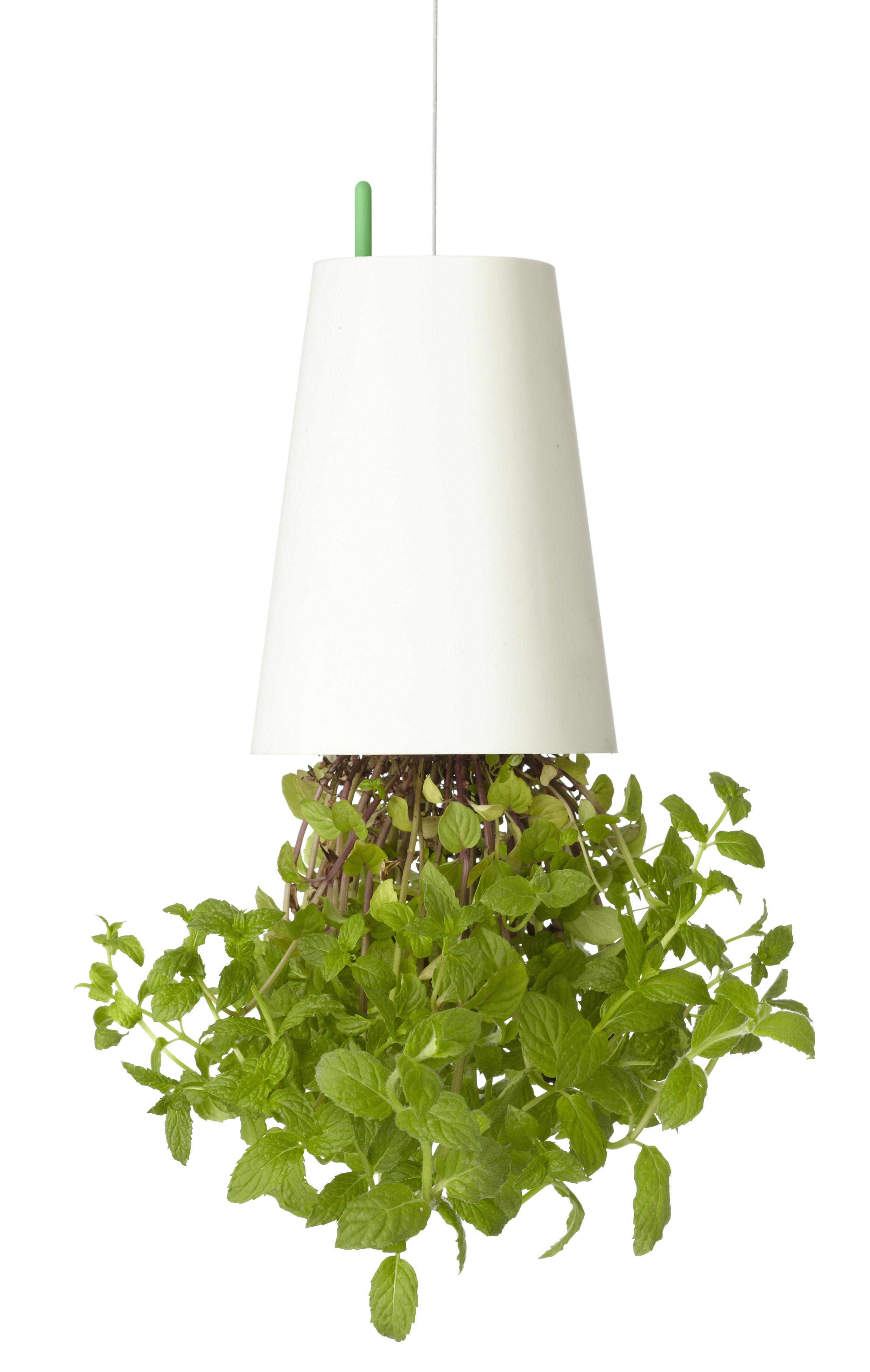 Decoration - Funny & surprising - Sky Planter - Polypropylene Small - H 13 cm / Upside down planter by Boskke - White - Recycled polypropylene