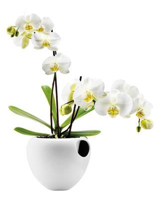 Outdoor - Töpfe und Pflanzen - Blumentopf mit Wasserreservoir für Orchideen  - Eva Solo - Weiß - Fayence