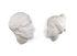 Decorazione Memorabilia Mvsevm - / Testa donna - H 37 cm di Seletti