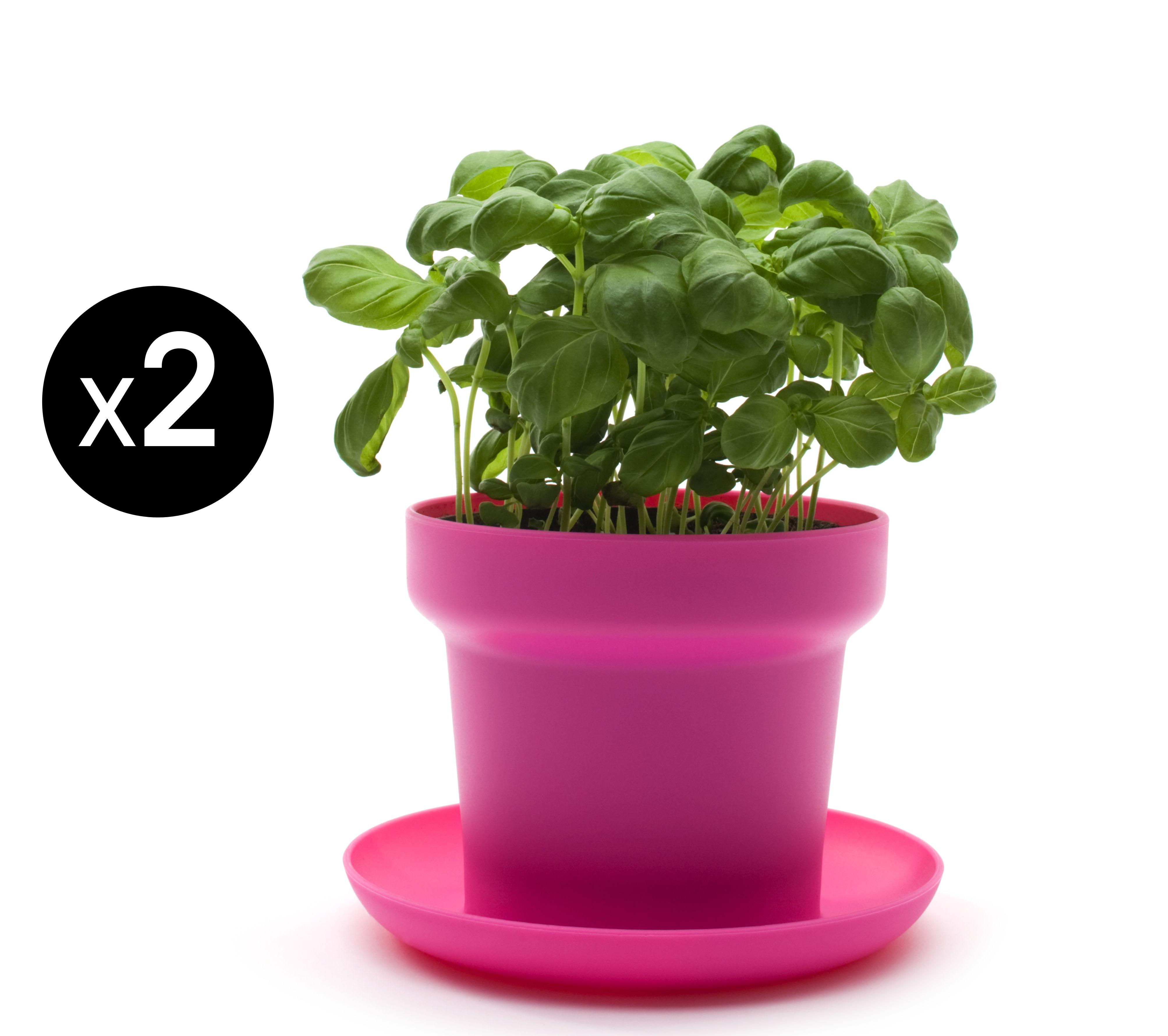 Outdoor - Vasi e Piante - Vaso per fiori Green - / Set da 2 di Authentics - Rosa - Polipropilene
