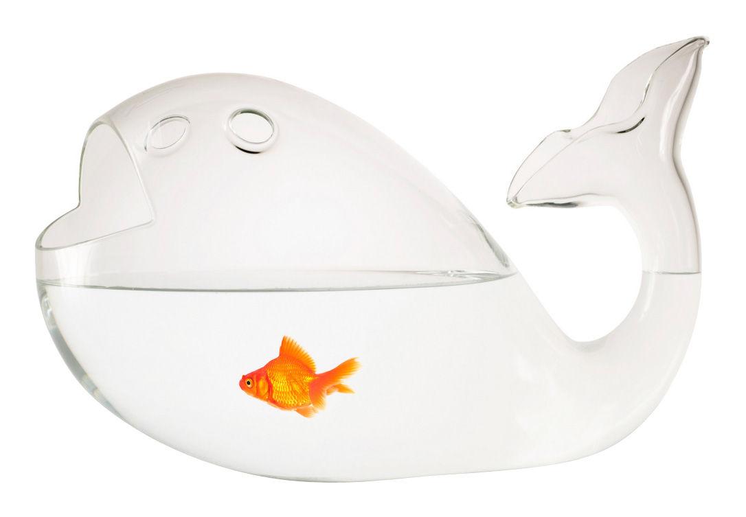 Déco - Tendance humour & décalage - Aquarium Giona Medium L 27 cm - Skitsch - Transparent - L 27 cm - Verre soufflé