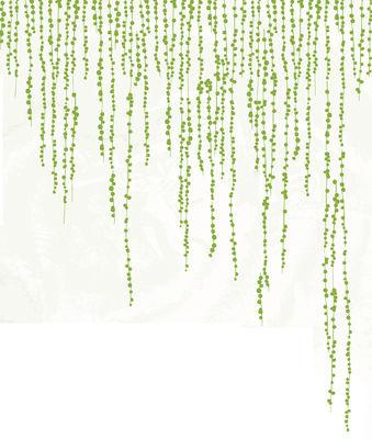 Interni - Sticker - Sticker Jungle Peas di Domestic - Verde - Vinile