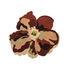 Tapis Flora - Bloom 2 / By Santoi Moix - 150 x 170 cm / Laine - Nanimarquina