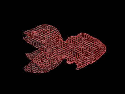 Décoration à suspendre Poisson Medium / L 65 cm - Grillage - Magis Collection Me Too rouge en métal