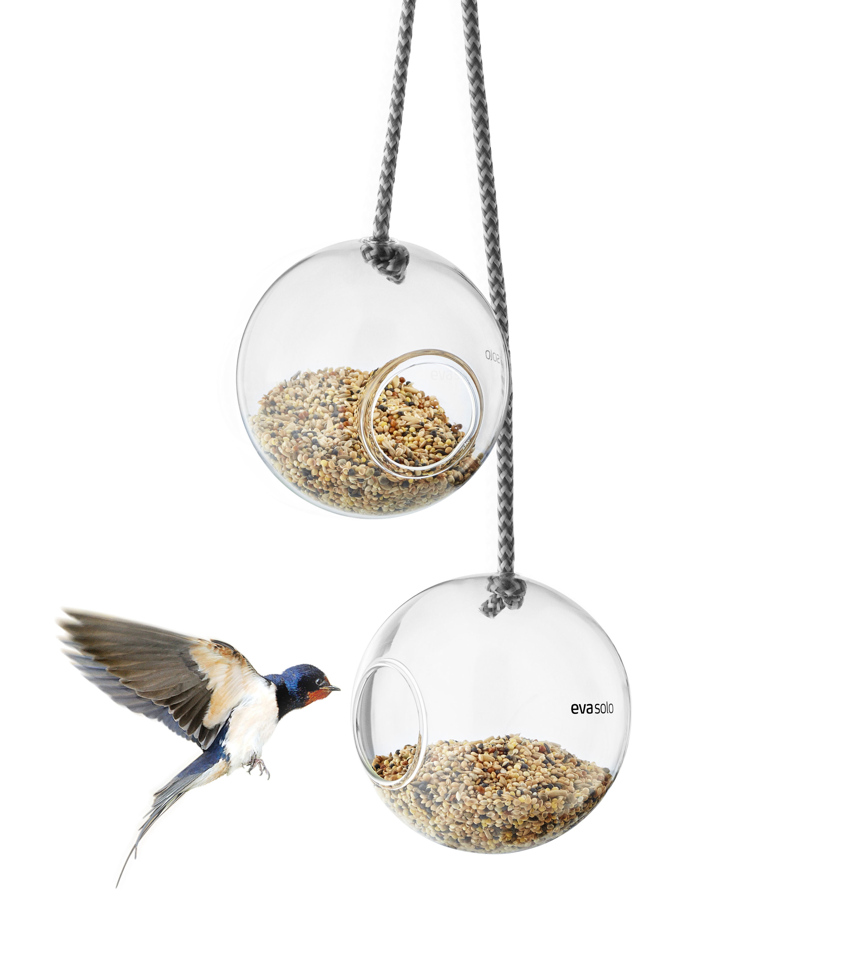 Outdoor - Ornaments & Accessories - Bird feeding tray - / Set of 2 - Ø 10 cm by Eva Solo - Transparent - Borosilicated glass, Nylon