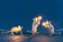 / 1W - 90 lumen Bulb LED E12 - / For Mouse lamp by Seletti