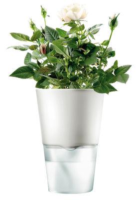 Küche - Einfach praktisch - Blumentopf mit Wasserreservoir - klein - Eva Solo - Klein- Weiß - Glas, Keramik