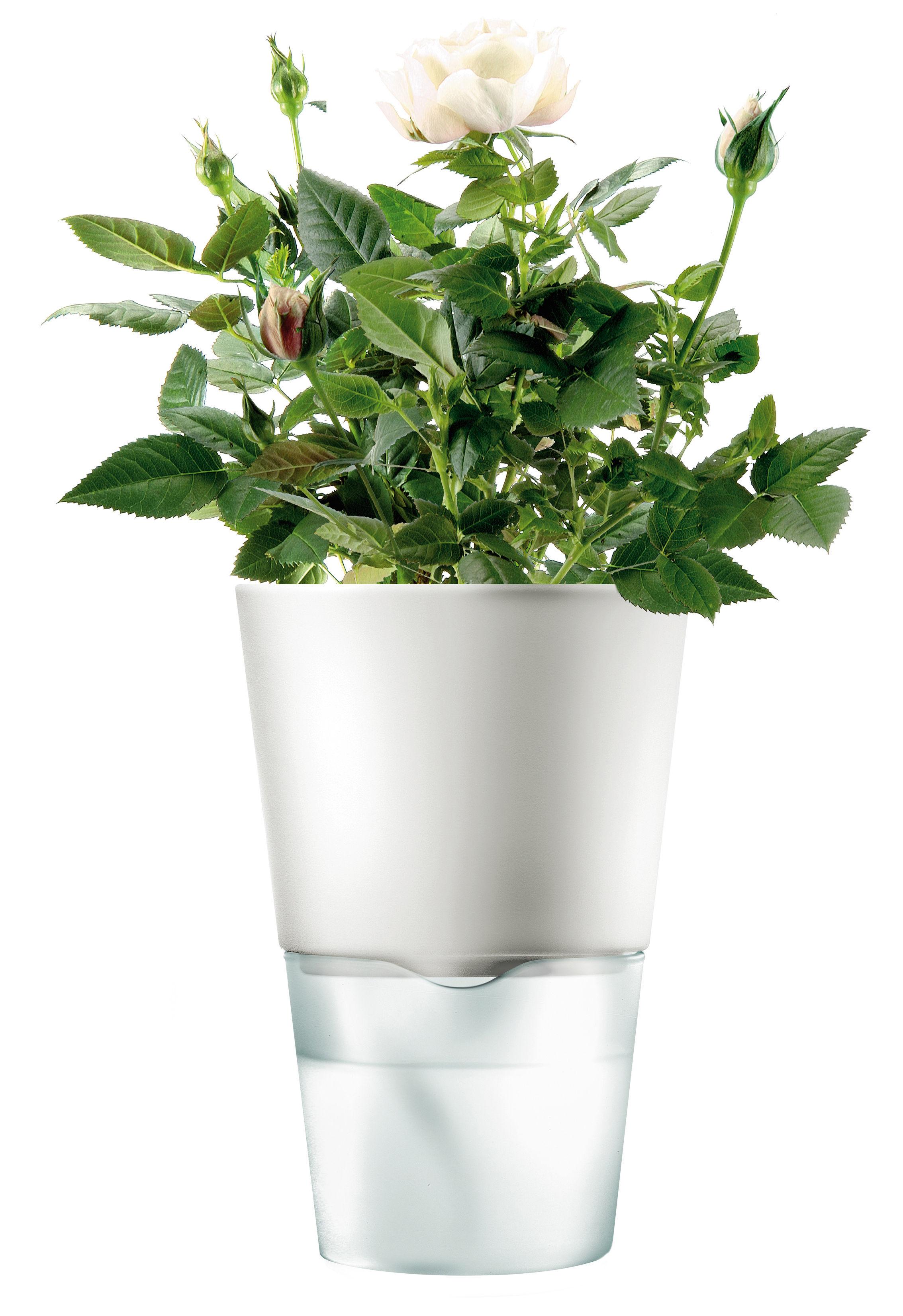 Cuisine - Pratique & malin - Pot à réserve d'eau / Ø 11 cm - Version céramique - Eva Solo - Petit - Blanc - Céramique, Verre