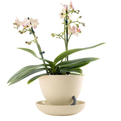 Déco - Pots et plantes - Pot de fleurs autosuffisant / Arrosage par capillarité - Eva Solo - Sable - Céramique, Nylon