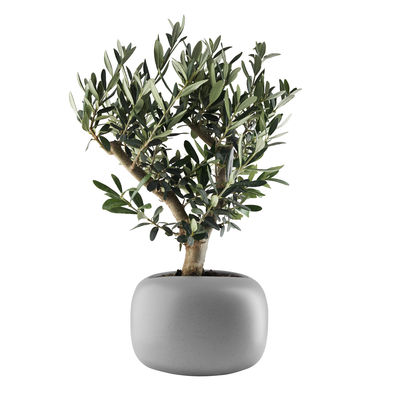 Decoration - Flower Pots & House Plants - Stone Flowerpot - / Ø 19 cm - Ceramic by Eva Solo - Ø 19 cm / Grey - Ceramic