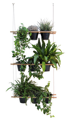 Furniture - Room Dividers & Screens - Etcetera Planter - Vegetal screen by Compagnie - Natural wood - Steel, Varnished beechwood