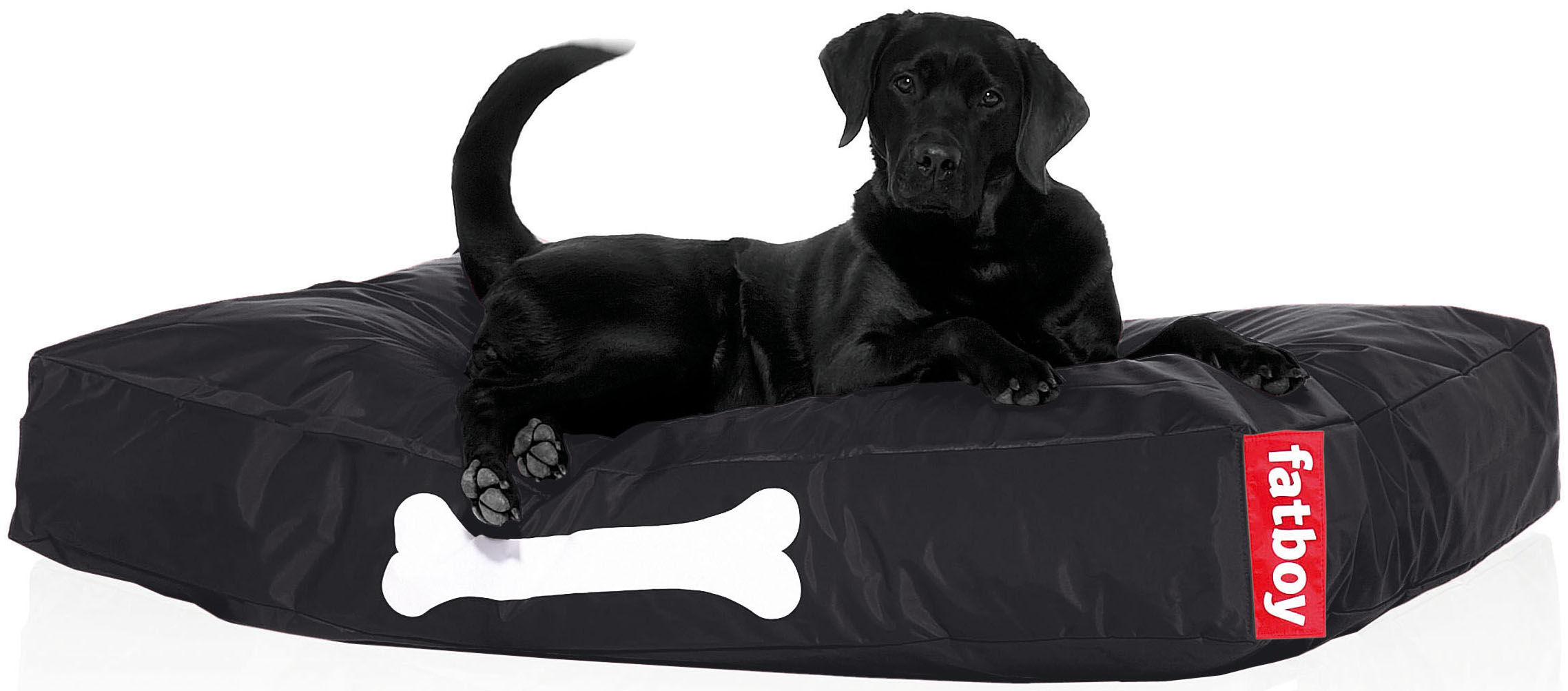 Furniture - Poufs & Floor Cushions - Doggielounge Pouf - For dogs - large by Fatboy - Black - Nylon fabric