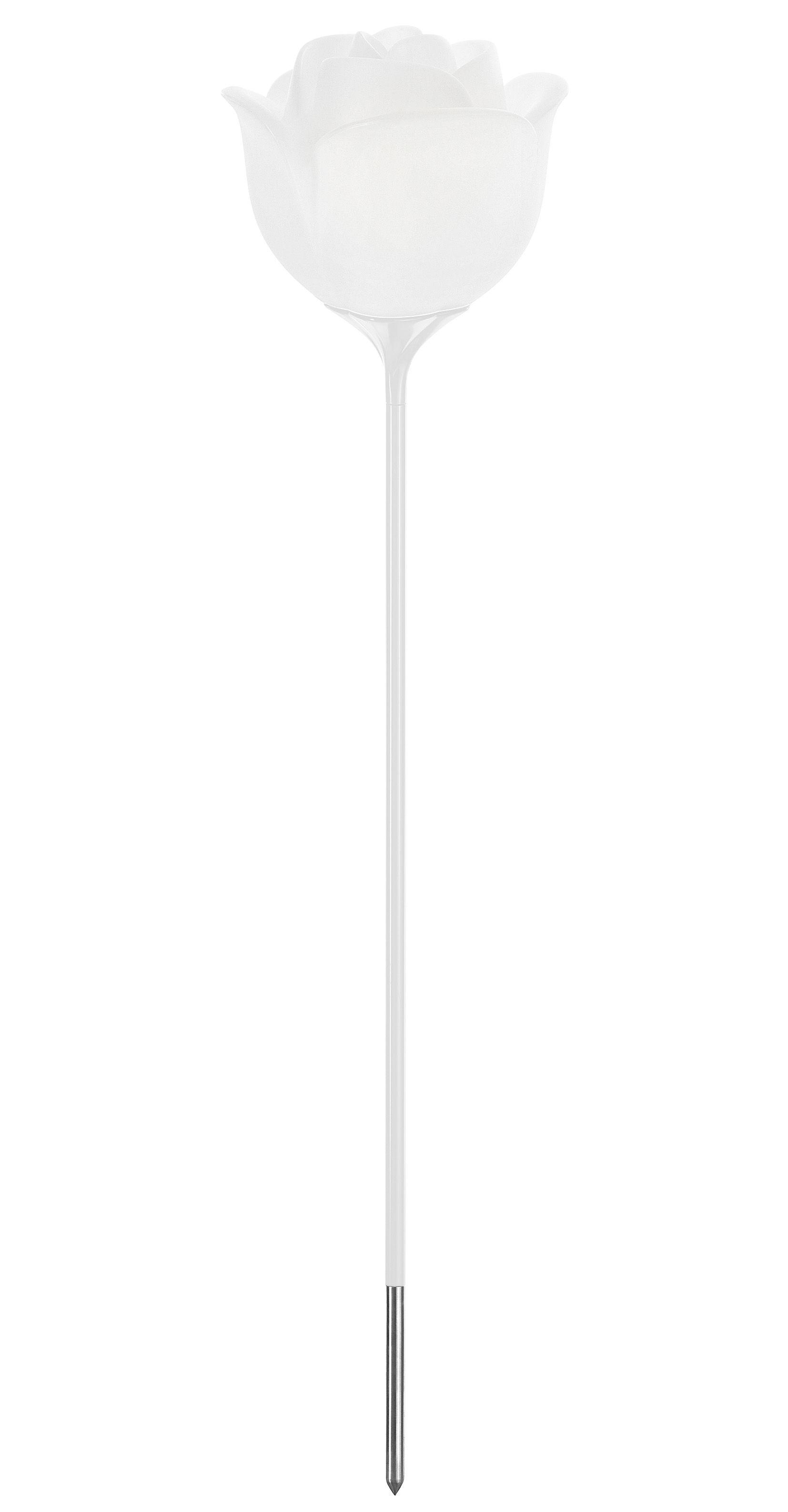 Illuminazione - Illuminazione da esterni - Lampada a stelo Baby love - da piantare / H 182 cm di MyYour - Trasparente / Bianco - Poleasy