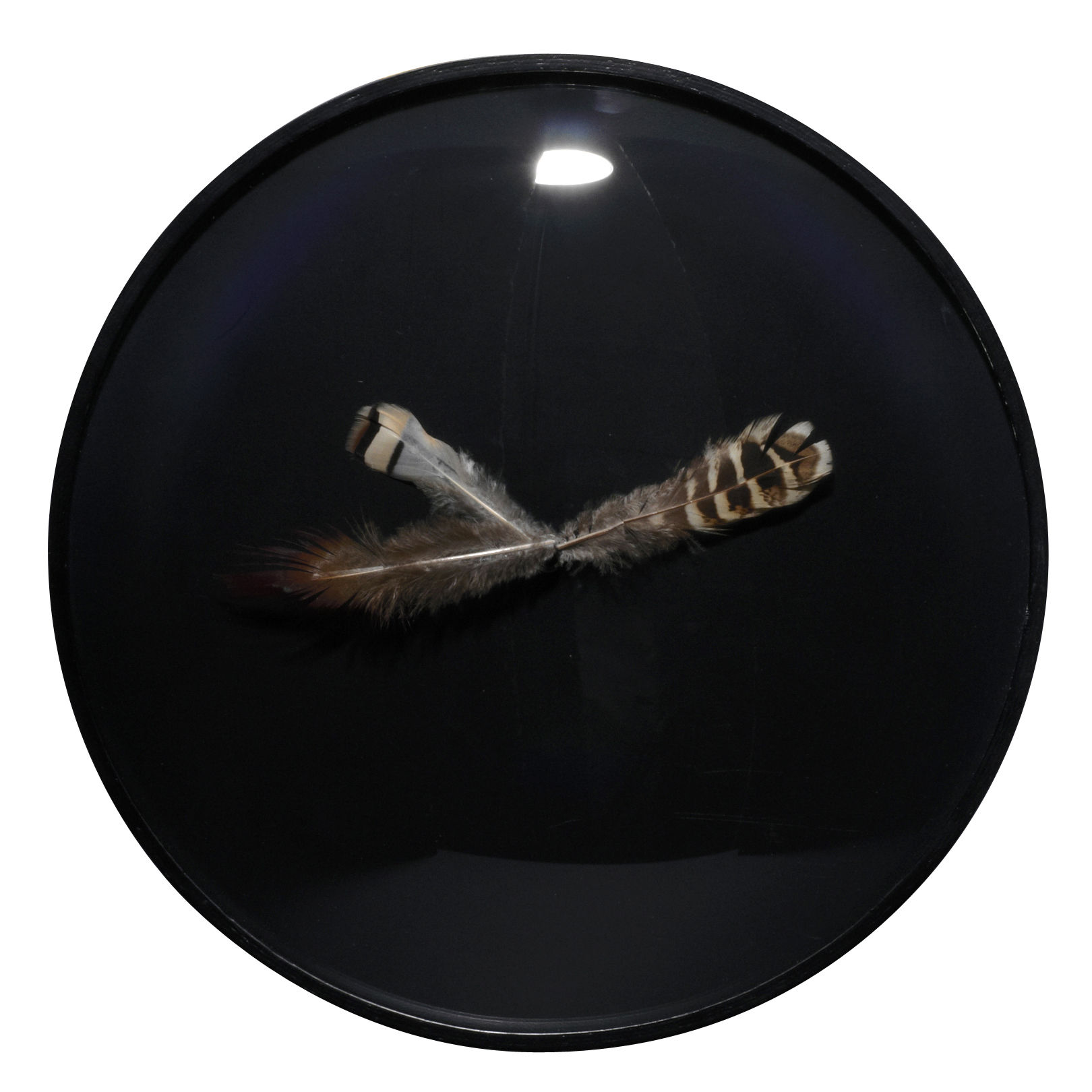 Decoration - Wall Clocks - Wall clock by L'atelier d'exercices - Black - Glass, Wood