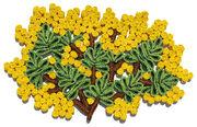 Set de table Florigraphie Mimosa 50 x 35 cm Seletti jaune,vert en fibre végétale