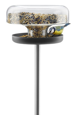 Accessories - Bird Feeder & Pet Accessories - Bird feeding tray by Eva Solo - 2 liters - Glass, Polished stainless steel, Rubber