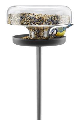 Accessori - Animali domestici - Mangiatoia per uccellini - Eva Solo - 2 litri - Acciaio inossidabile lucido, Gomma, Vetro