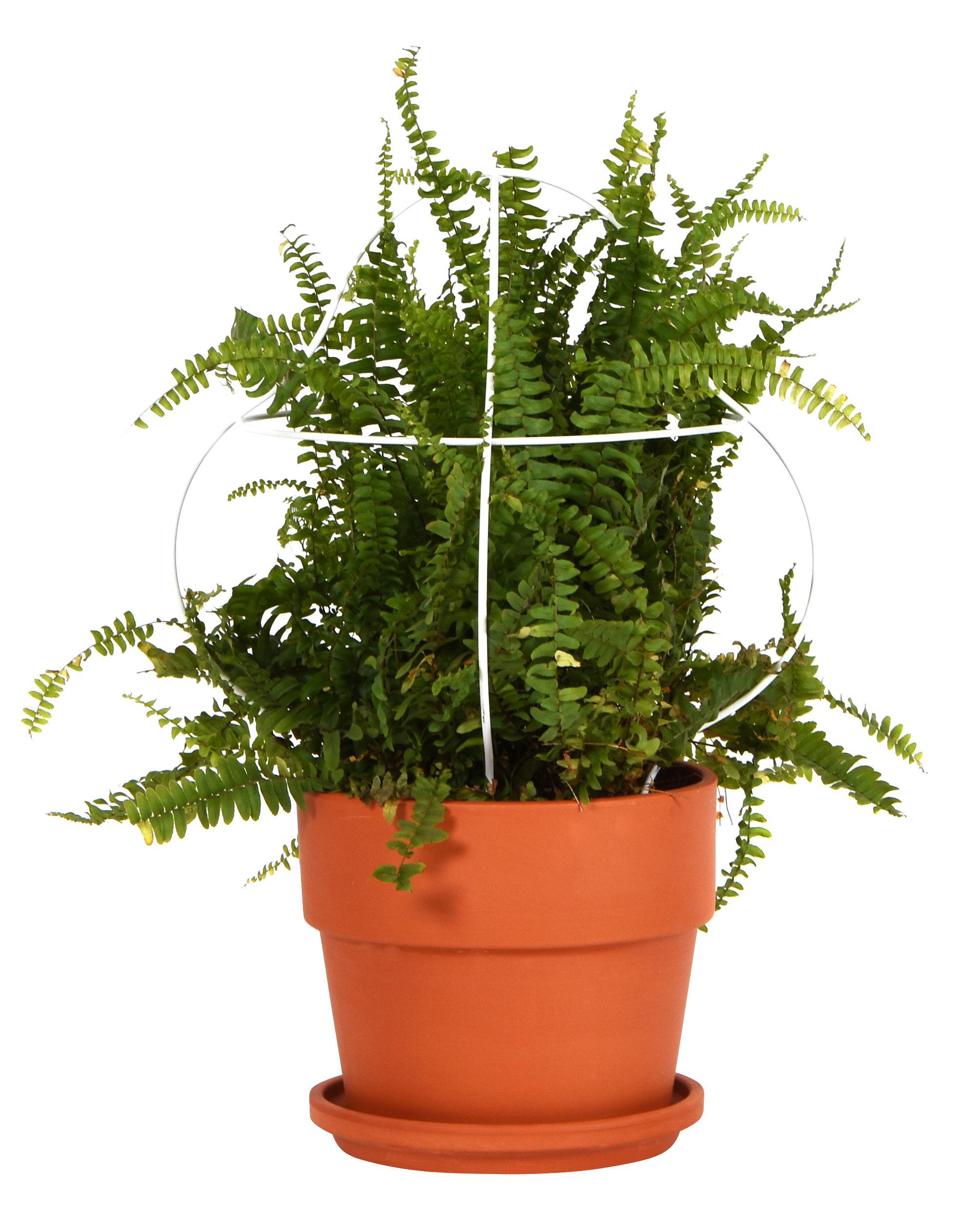 Outdoor - Vasi e Piante - Vaso da fiori Outline con supporto / Modello medio - Struttura 4 - ENOstudio - Struttura 4 / Terracotta & bianco - Metallo, Terracotta