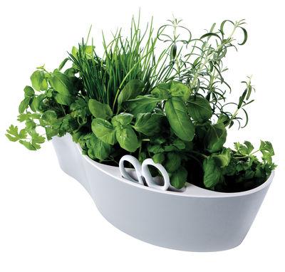 Cuisine - Pratique & malin - Pot de fleurs Herb Garden / Pour herbes aromatiques - Avec ciseaux - Royal VKB - Extérieur gris / Intérieur blanc - Mélamine