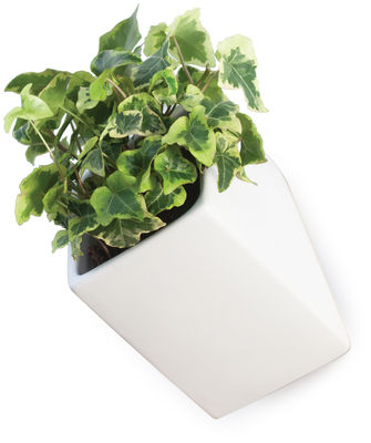 Decoration - Flower Pots & House Plants - Off the wall Wall flowerpot - Large - D 11,5 cm by Thelermont Hupton - White - Ceramic