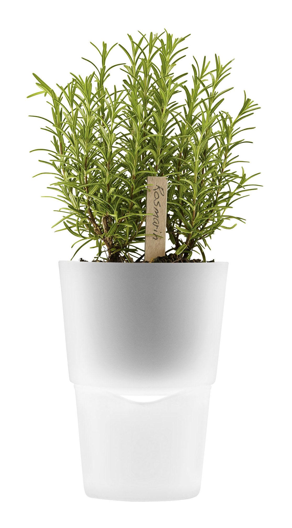 Outdoor - Töpfe und Pflanzen - Blumentopf mit Wasserreservoir - Ø 13 cm - Glas - Eva Solo - Milchglas - Ø 13 cm - Glas, Plastik