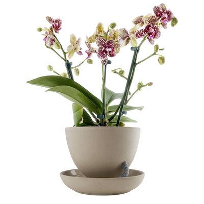 Decoration - Flower Pots & House Plants - Self-sufficient flowerpot - / Capillary watering by Eva Solo - Nature - Ceramic, Nylon