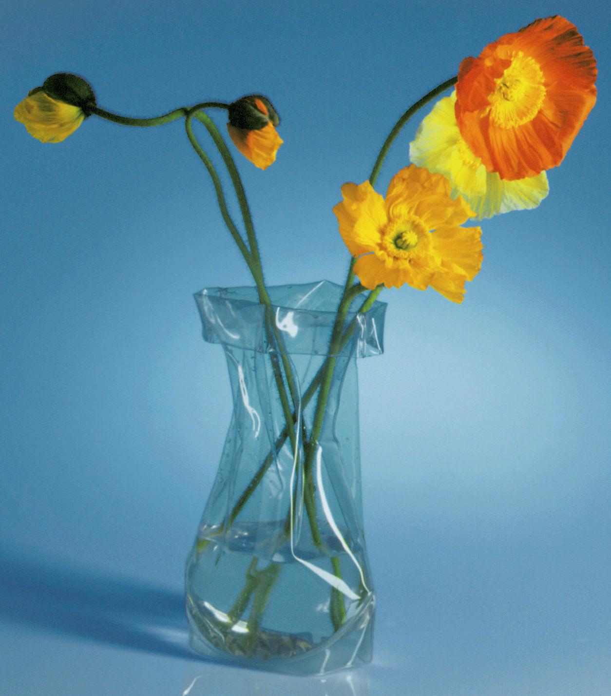Interni - Vasi - Vaso Le Sack - Modulabile di Pa Design - Trasparente - PVC