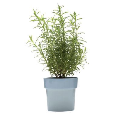 Pot de fleurs Slim / Ovale - Coupelle intégrée - Pa Design bleu en matière plastique