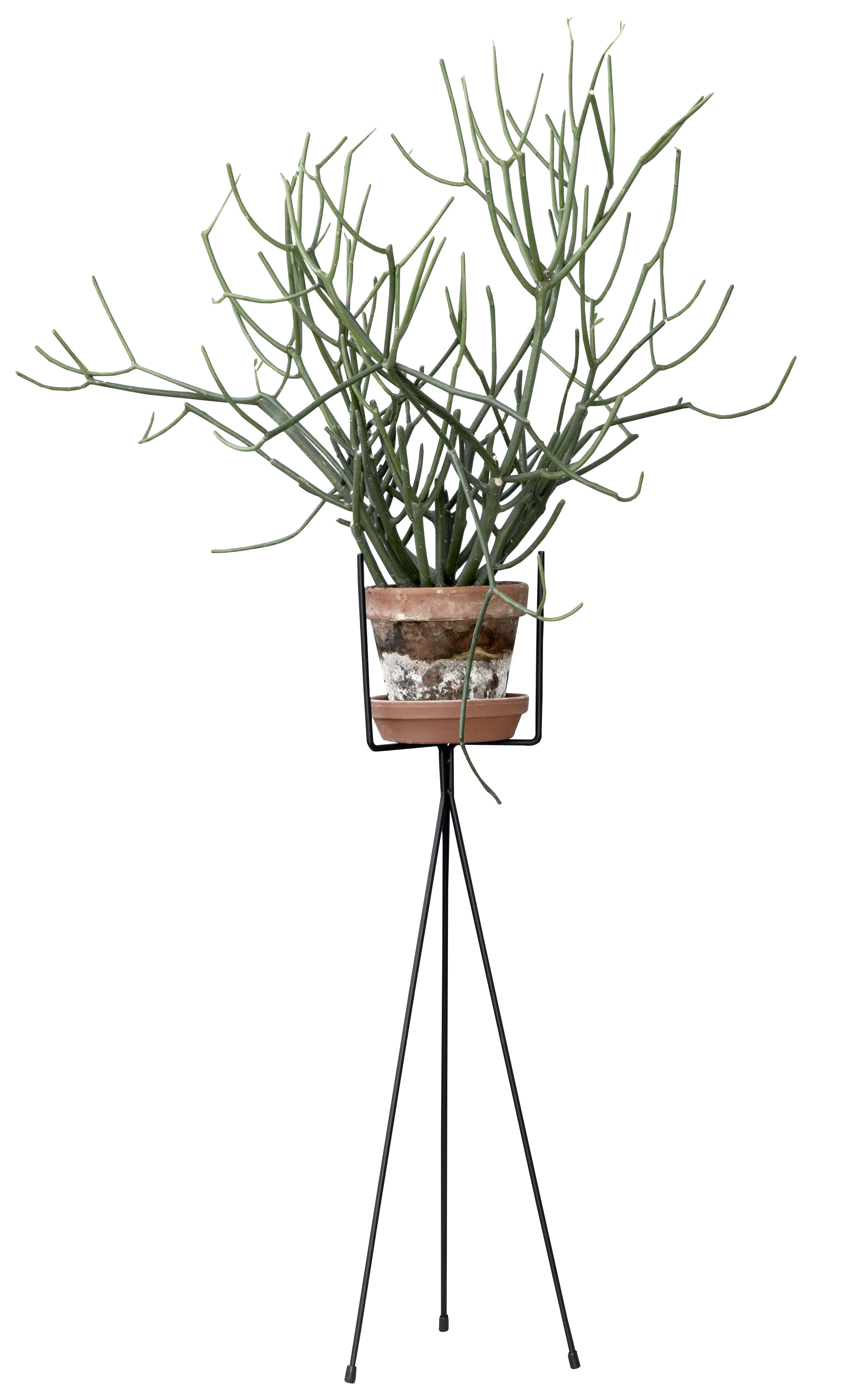 Decoration - Flower Pots & House Plants - Plant Stand LARGE Flowerpot stand - / For flowerpot - H 65 cm by Ferm Living - Black - Lacquered steel