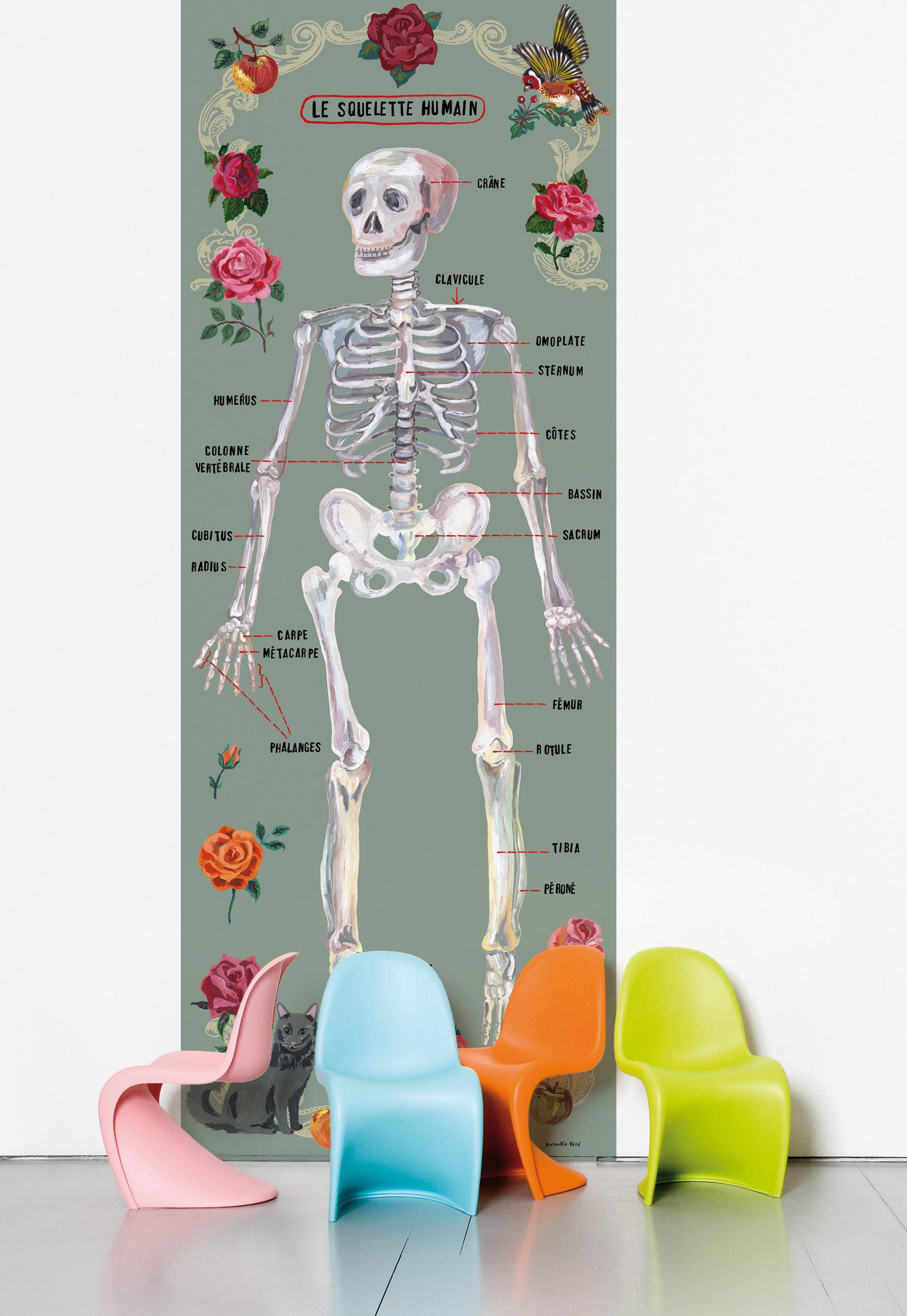 Dekoration - Stickers und Tapeten - Le squelette humain Tapete - Domestic - Mehrfarbig - Skelett - imprägniertes Papier