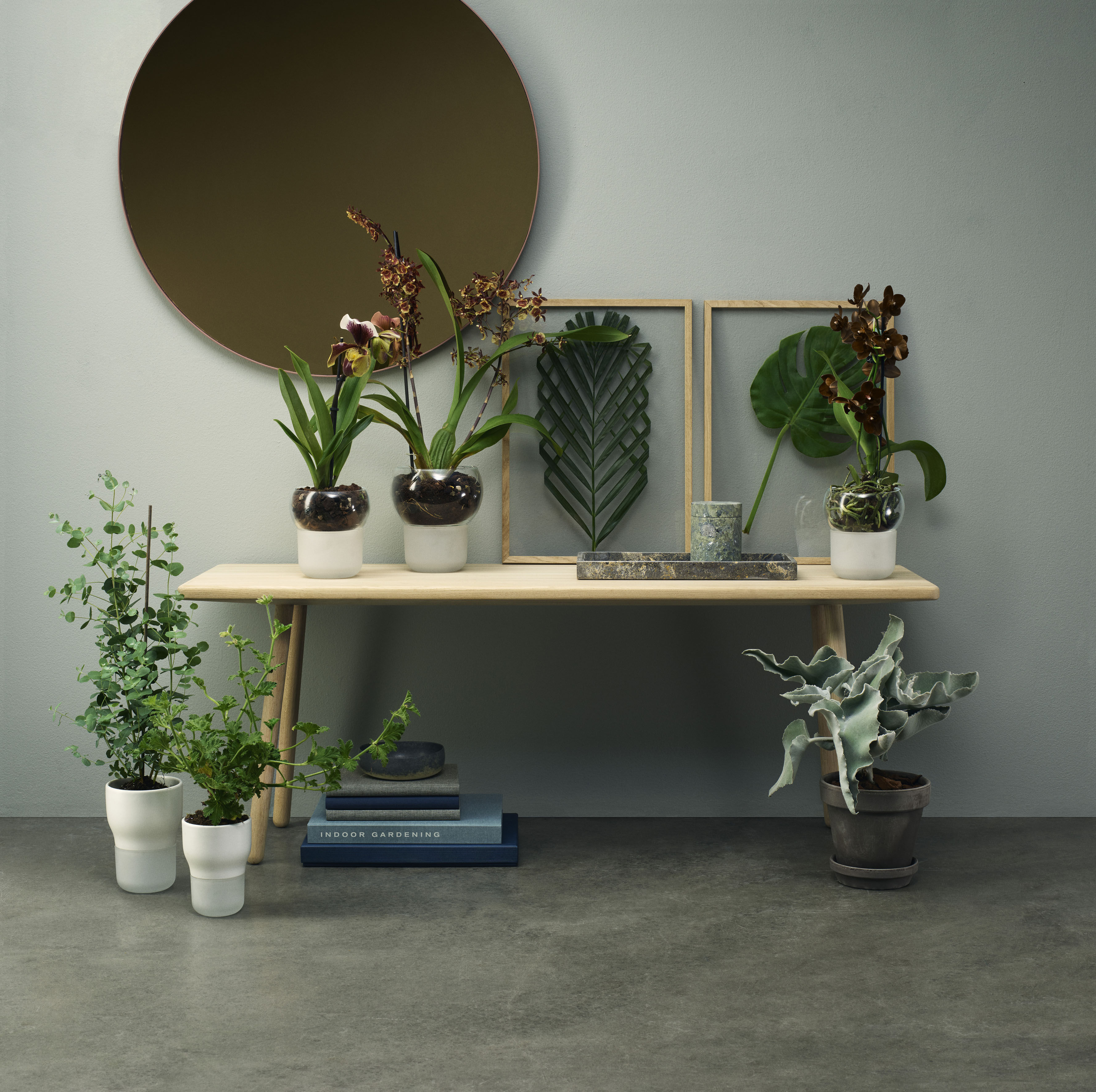 gr e s 13 cm f r orchideen eva solo blumentopf mit wasserreservoir. Black Bedroom Furniture Sets. Home Design Ideas