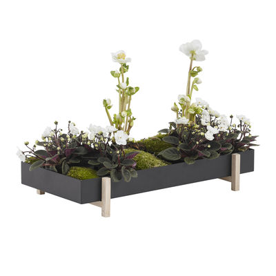 Dekoration - Töpfe und Pflanzen - Botanic Tray Blumentopf / Tischplatte - 45 x 20 cm x H 4,8 cm - Design House Stockholm - Schwarz / Esche - Esche massiv, Metall