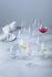 Ciao+ Red wine glass - / 610 ml by Leonardo