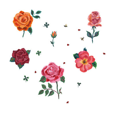 Decoration - Wallpaper & Wall Stickers - Des roses Sticker - Set of 6 by Domestic - Multicoloured - Vinyl