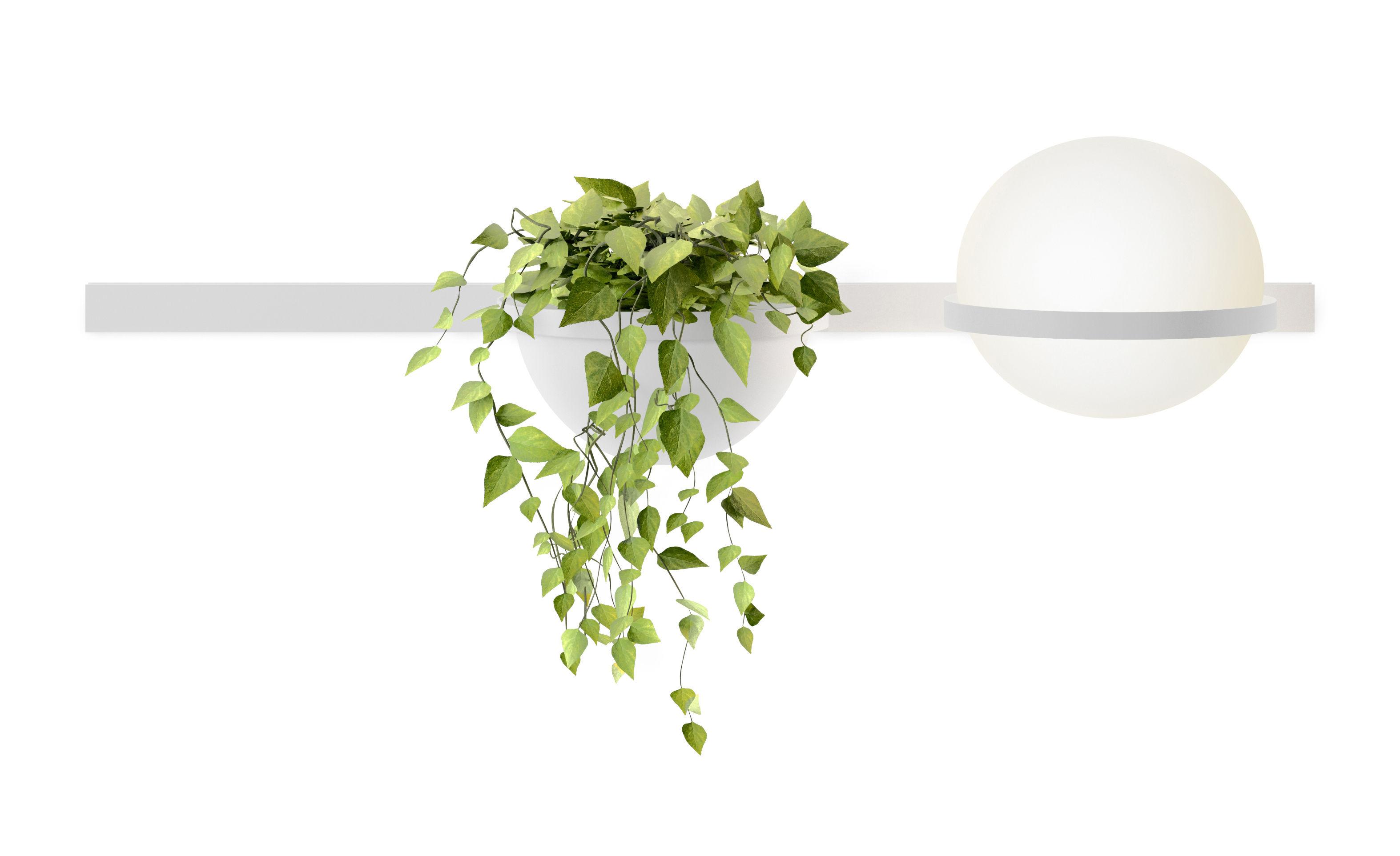 Illuminazione - Lampade da parete - Applique Palma - / Orizzontale & fioriera di Vibia - Laccato bianco opaco - Alluminio, PMMA, Vetro soffiato opalino