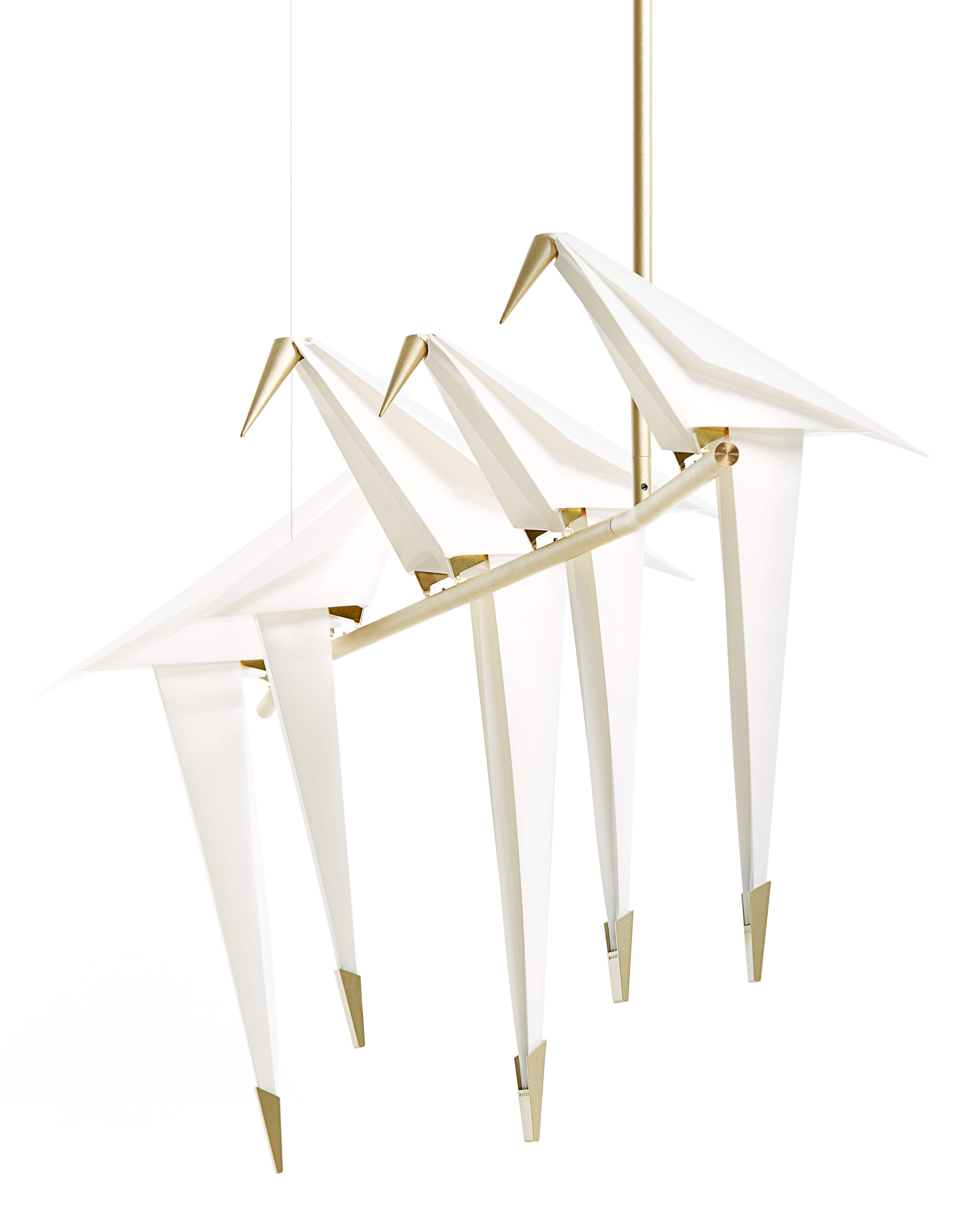 Leuchten - Pendelleuchten - Perch Light Branch LED Pendelleuchte / abnehmbare Vögel - L 100 cm - Moooi - Weiß & Messing - Aluminium, Polypropylen, Stahl