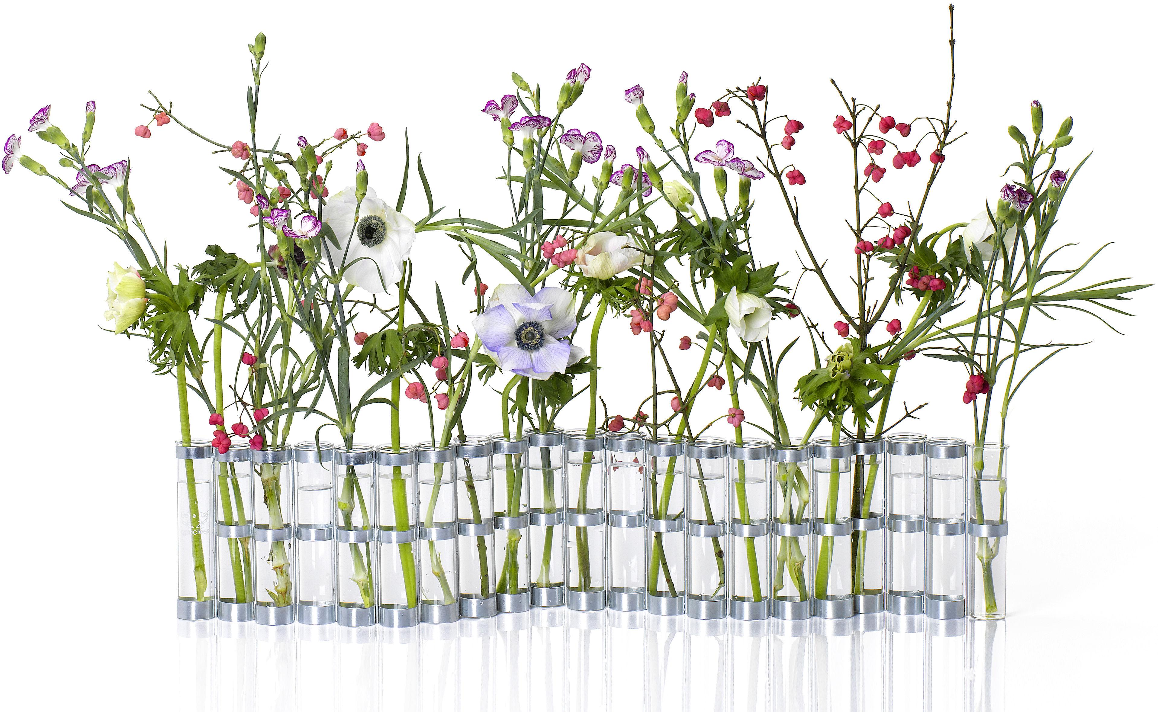 Déco - Vases - Vase d'avril Medium  / L 74 x H 15 cm - Tsé-Tsé - Medium - L 74 x H 15 cm - Acier zingué, Verre
