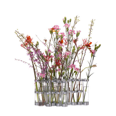 Decoration - Vases - d'avril Vase - Medium  / L 74 x H 15 cm by Tsé-Tsé - Medium - L 74 x H 15 cm - Glass, Zinc coated steel