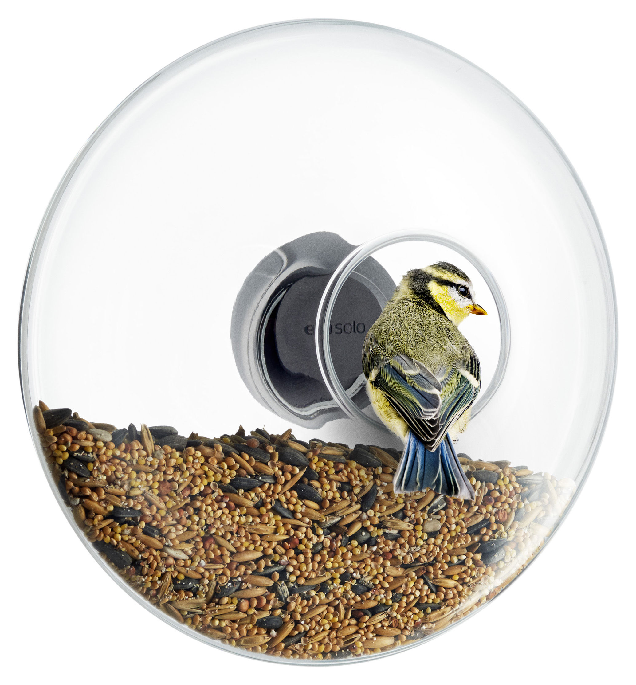 Outdoor - Déco et accessoires - Mangeoire à oiseaux Large / Pour fenêtre - Ø 20 cm - Eva Solo - Ø 20 cm / Transparent - Acier inoxydable, Gomme, Verre