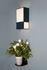 Applique Radieuse / H 36 cm - Velours / Non électrifiée - Maison Sarah Lavoine